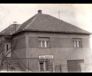 1960, Újtelep